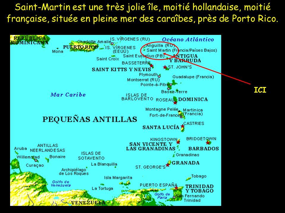 Saint-Martin est une très jolie île, moitié hollandaise, moitié française, située en pleine mer des caraîbes, près de Porto Rico.