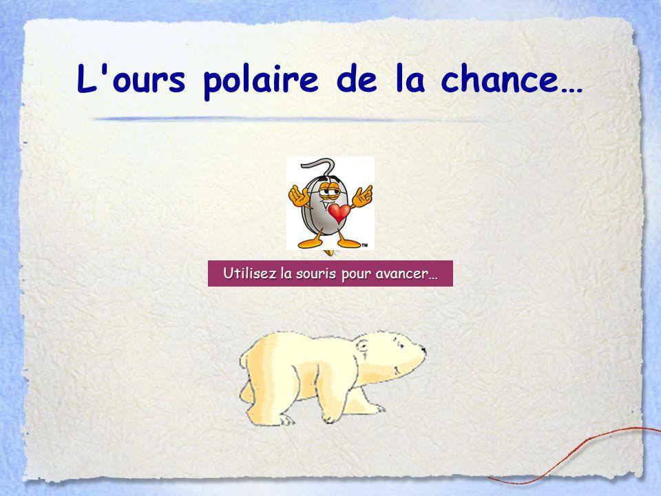 L ours polaire de la chance…