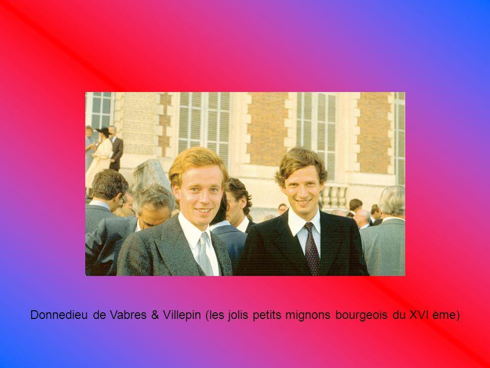 Donnedieu de Vabres & Villepin (les jolis petits mignons bourgeois du XVI ème)