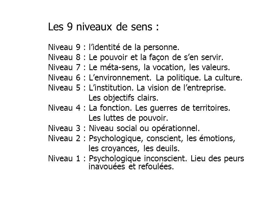Les 9 niveaux de sens : Niveau 9 : l'identité de la personne.
