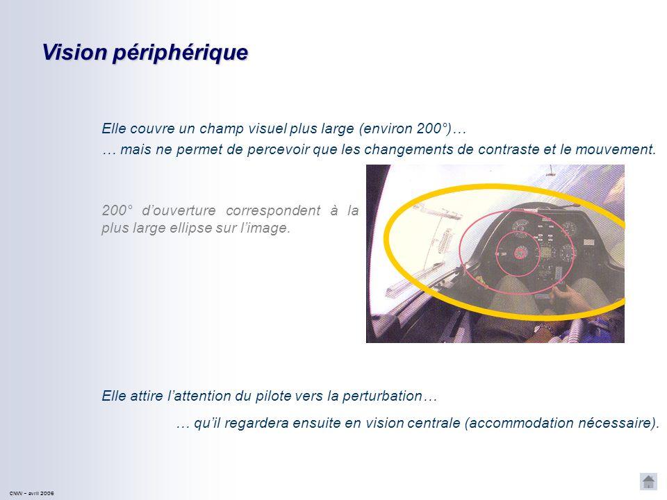 Vision périphériqueElle couvre un champ visuel plus large (environ 200°)…
