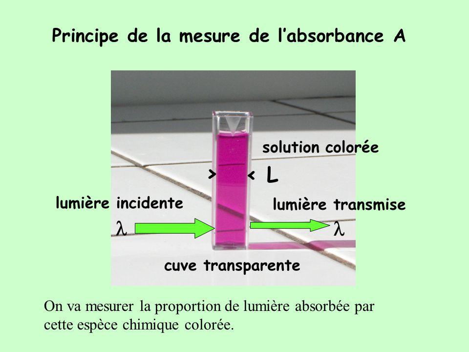 > < L l l Principe de la mesure de l'absorbance A