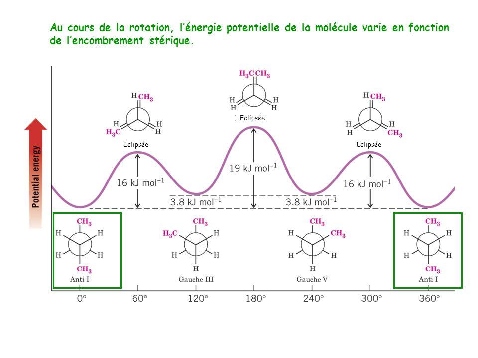 Au cours de la rotation, l'énergie potentielle de la molécule varie en fonction de l'encombrement stérique.
