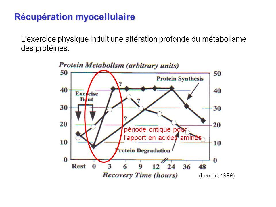 Récupération myocellulaire