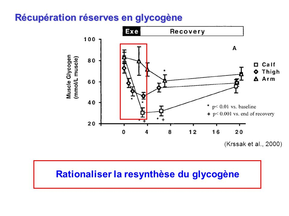 Rationaliser la resynthèse du glycogène