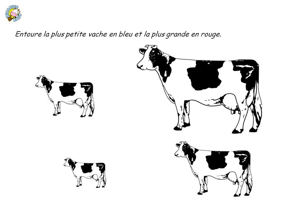 Entoure la plus petite vache en bleu et la plus grande en rouge.