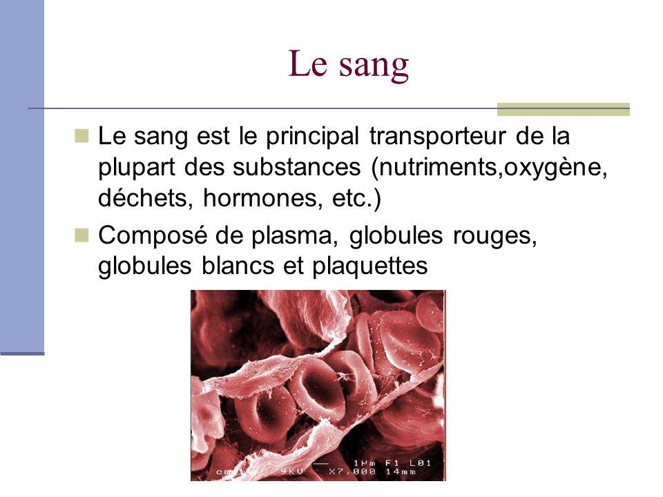 Le sang Le sang est le principal transporteur de la plupart des substances (nutriments,oxygène, déchets, hormones, etc.)