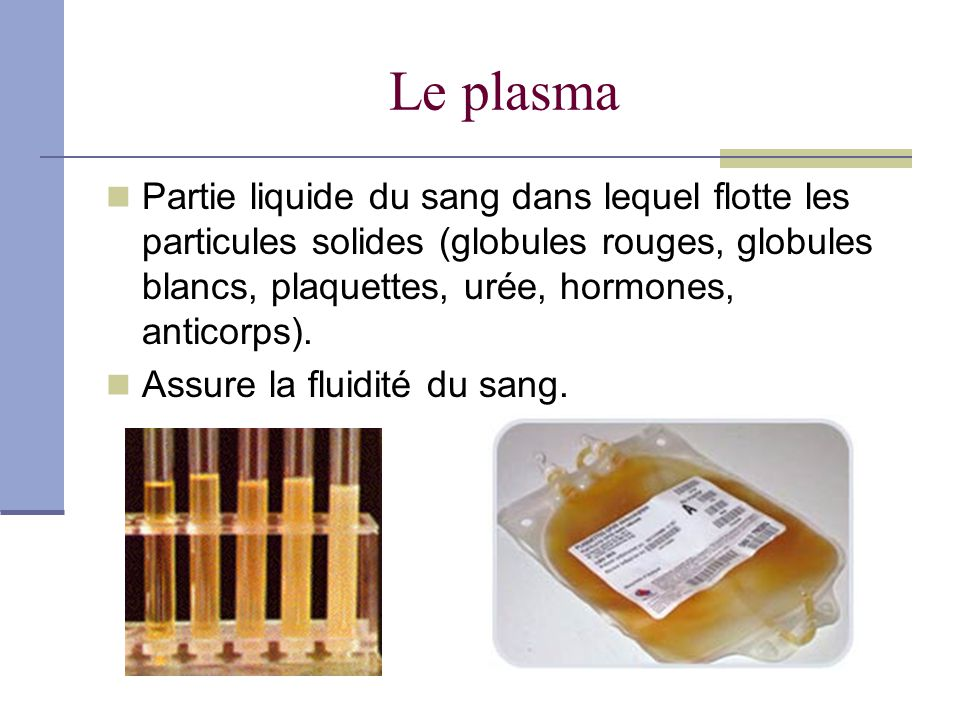 Le plasma Partie liquide du sang dans lequel flotte les particules solides (globules rouges, globules blancs, plaquettes, urée, hormones, anticorps).