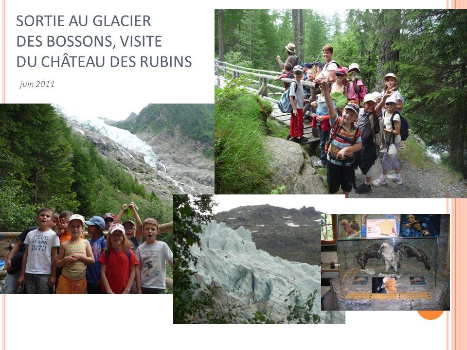 SORTIE AU GLACIER DES BOSSONS, VISITE DU CHÂTEAU DES RUBINS juin 2011