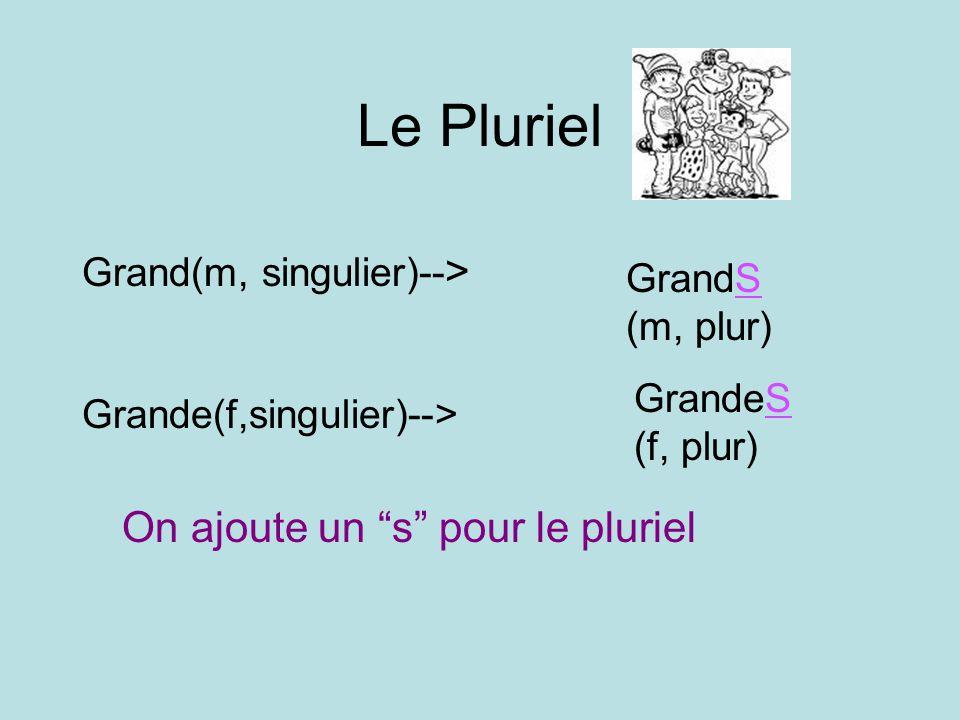 Le Pluriel On ajoute un s pour le pluriel Grand(m, singulier)-->