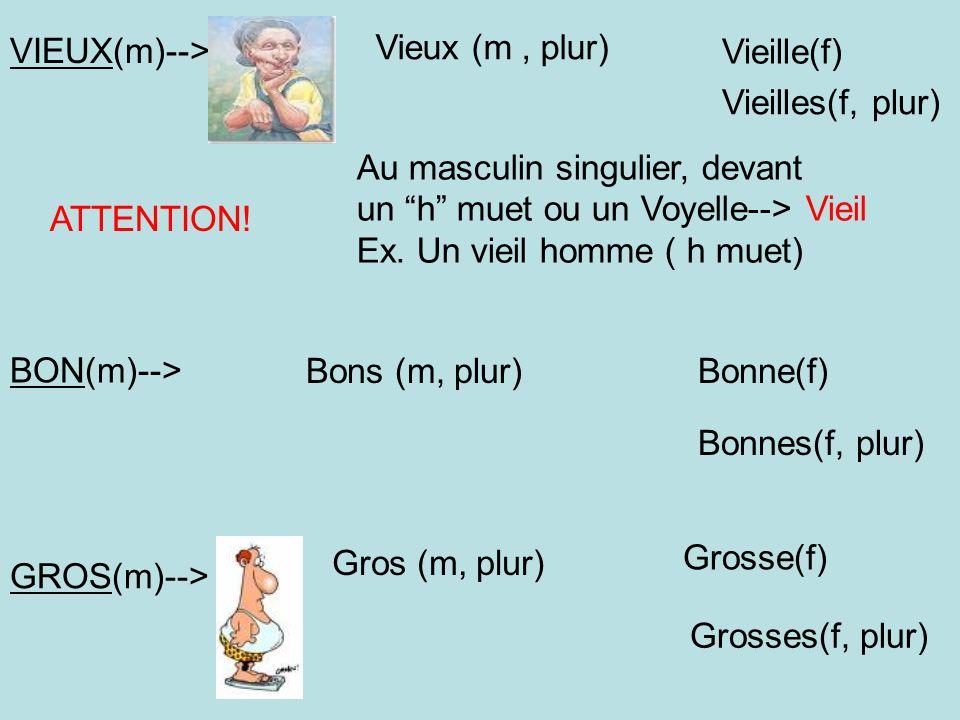 VIEUX(m)--> Vieux (m , plur) Vieille(f) Vieilles(f, plur) Au masculin singulier, devant. un h muet ou un Voyelle--> Vieil.