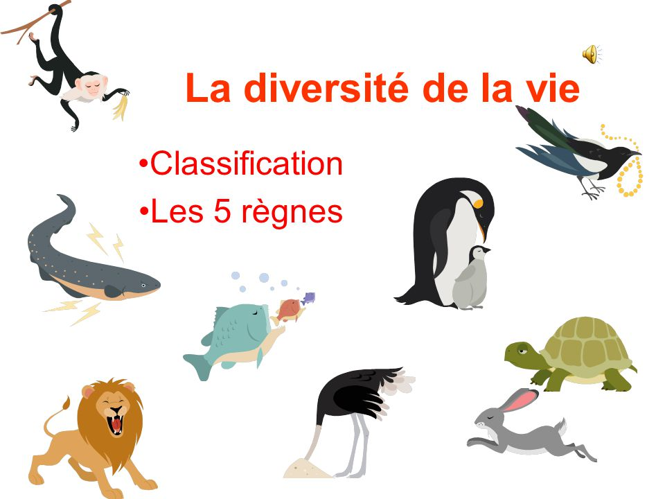 Classification Les 5 règnes