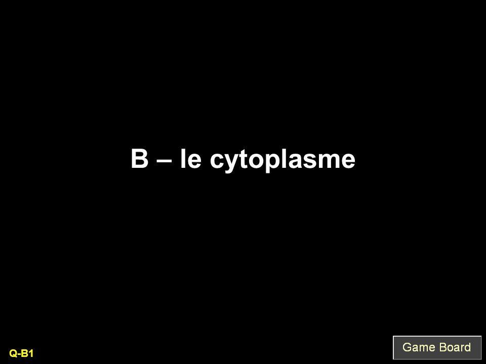 B – le cytoplasme Q-B1