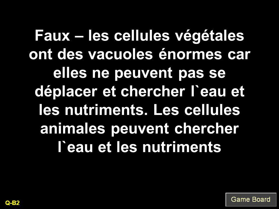 Faux – les cellules végétales ont des vacuoles énormes car elles ne peuvent pas se déplacer et chercher l`eau et les nutriments. Les cellules animales peuvent chercher l`eau et les nutriments