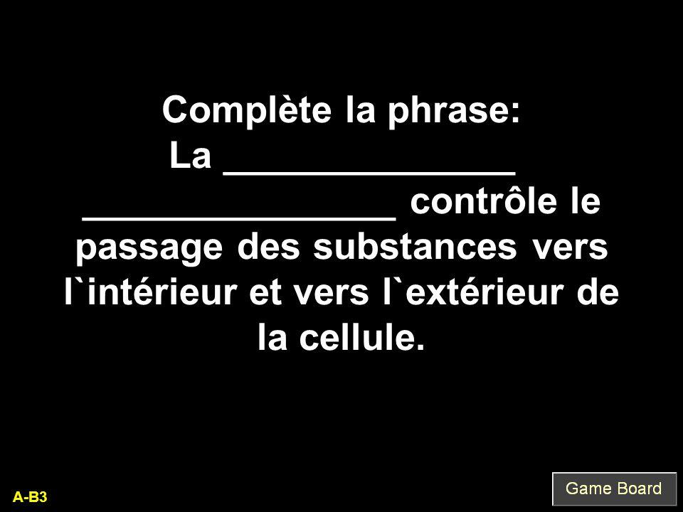 Complète la phrase: La ______________