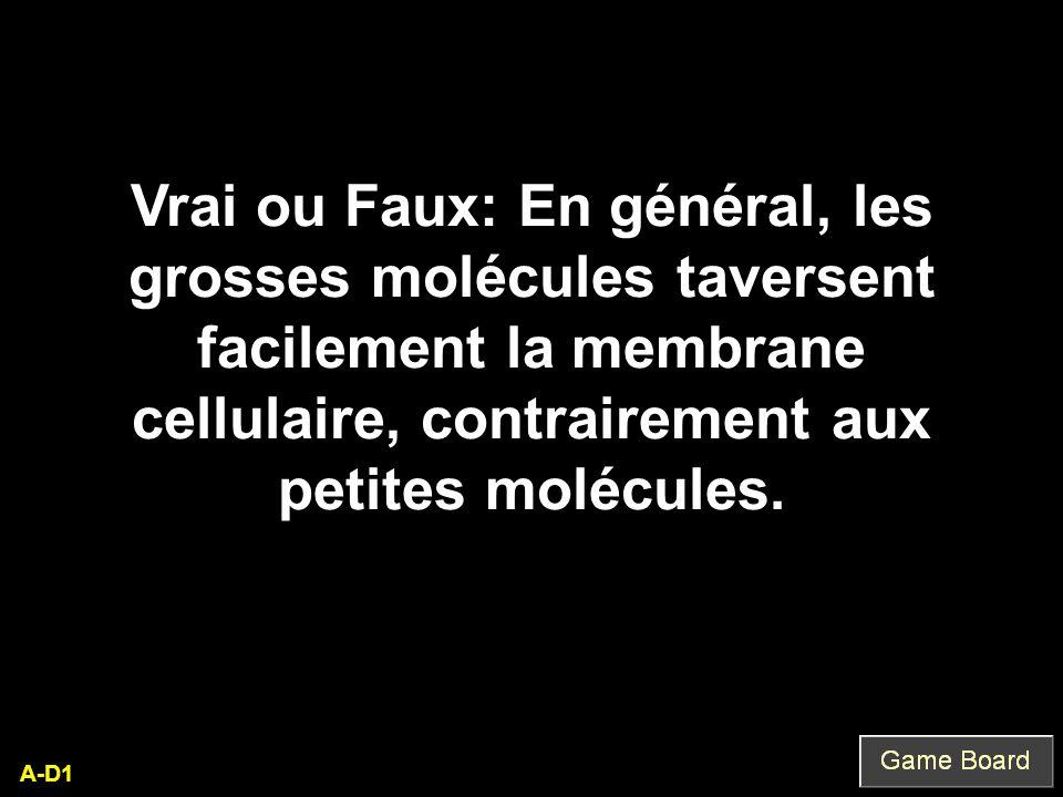 Vrai ou Faux: En général, les grosses molécules taversent facilement la membrane cellulaire, contrairement aux petites molécules.