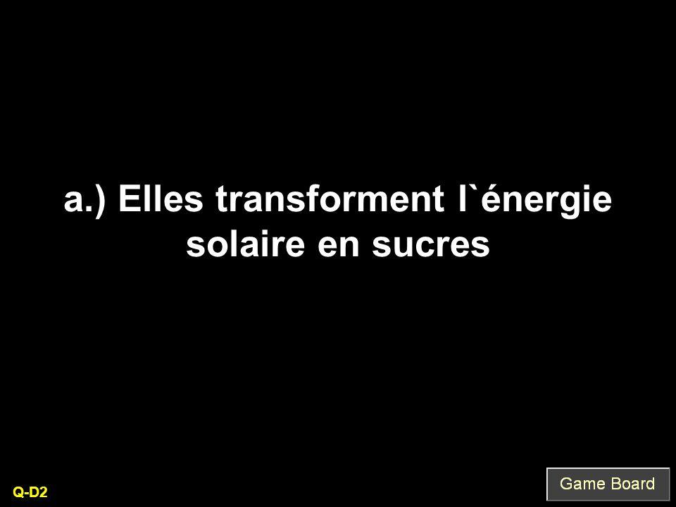 a.) Elles transforment l`énergie solaire en sucres