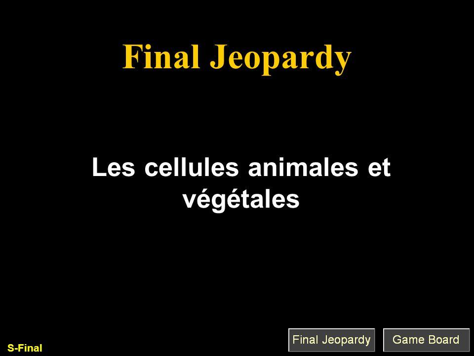 Les cellules animales et végétales