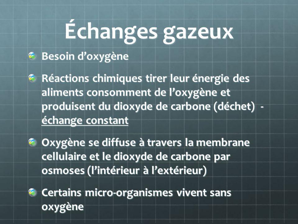 Échanges gazeux Besoin d'oxygène