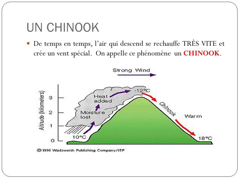 UN CHINOOK De temps en temps, l'air qui descend se rechauffe TRÈS VITE et crée un vent spécial.