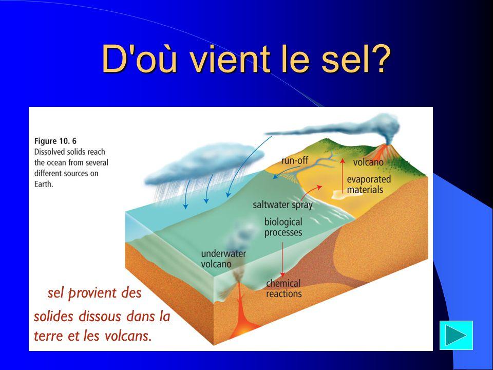 D où vient le sel *sel provient des solides dissous dans la terre et les volcans.