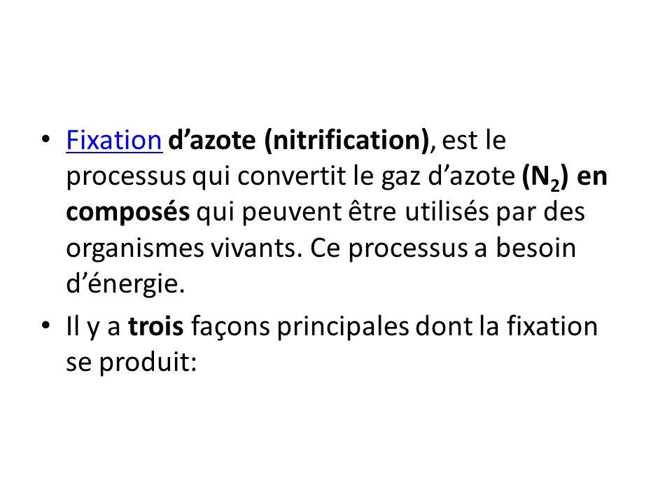 Fixation d'azote (nitrification), est le processus qui convertit le gaz d'azote (N2) en composés qui peuvent être utilisés par des organismes vivants. Ce processus a besoin d'énergie.