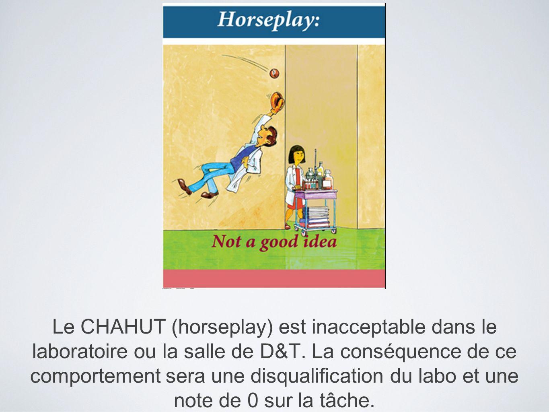Le CHAHUT (horseplay) est inacceptable dans le laboratoire ou la salle de D&T.