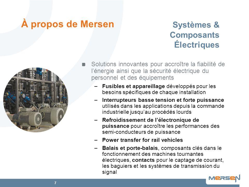 Systèmes & Composants Électriques