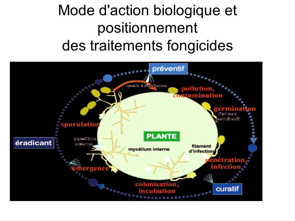 Mode d action biologique et positionnement des traitements fongicides
