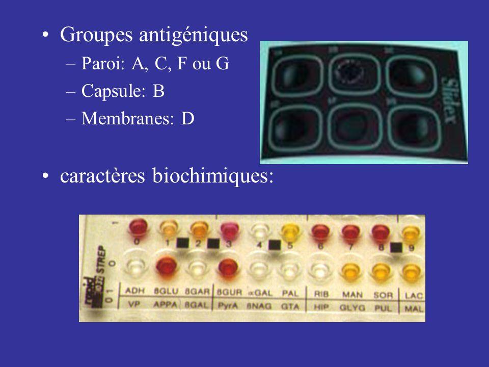 caractères biochimiques: