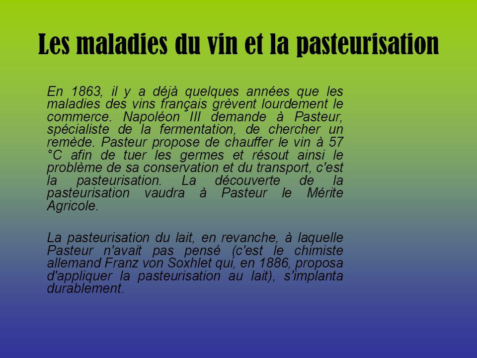 Les maladies du vin et la pasteurisation