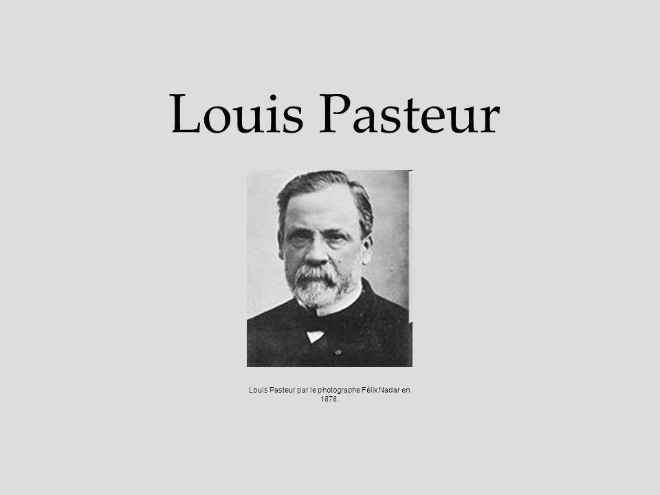 Louis Pasteur par le photographe Félix Nadar en 1878.