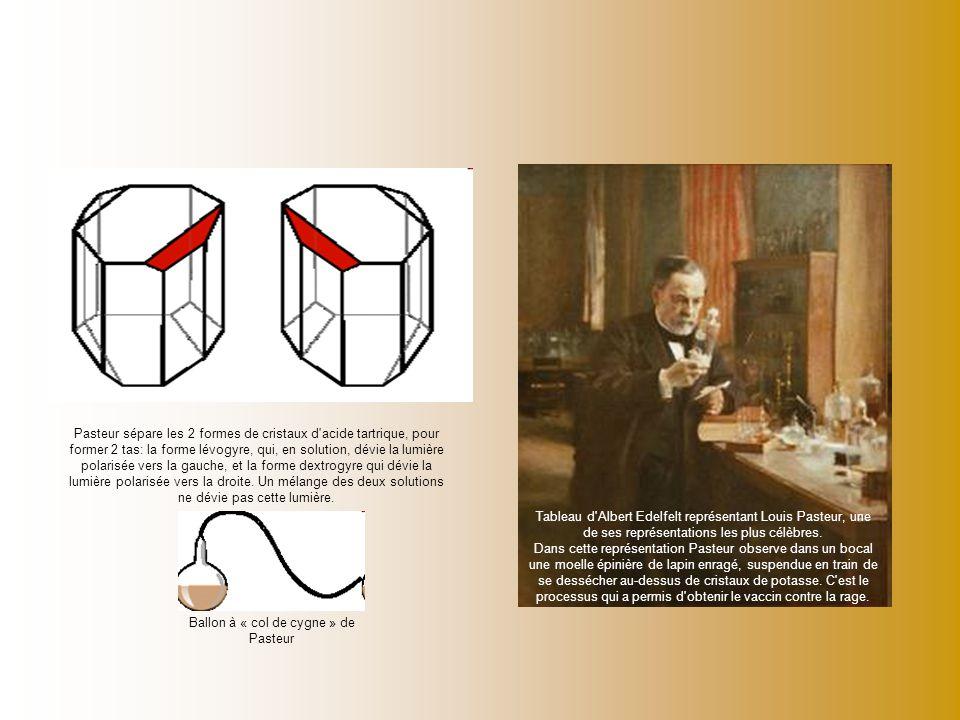 Ballon à « col de cygne » de Pasteur