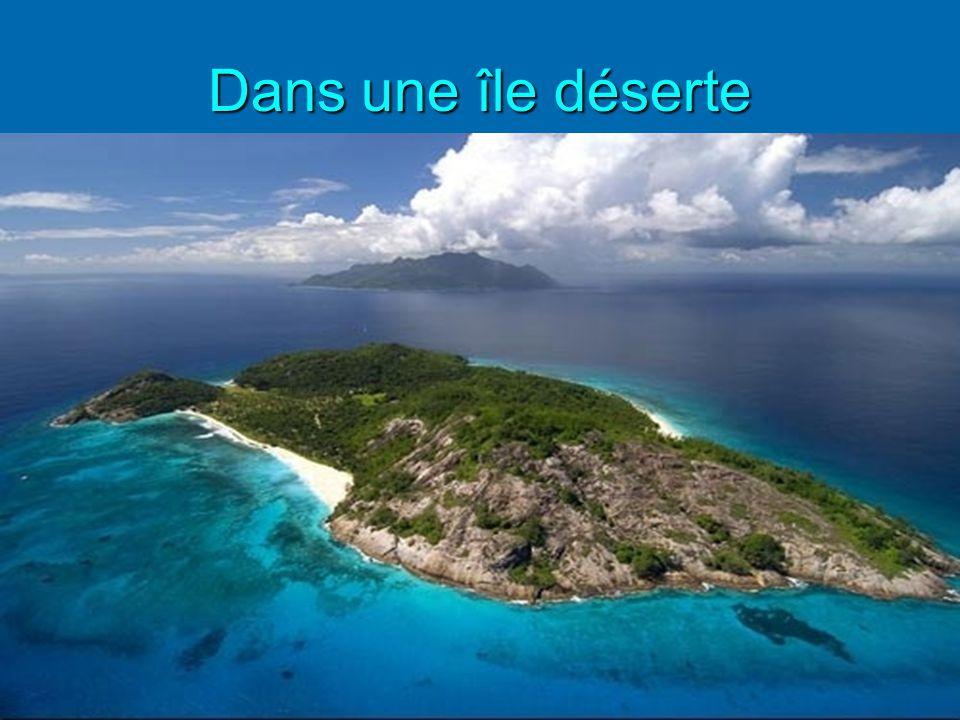 Dans une île déserte