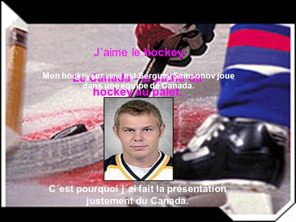 Le Canada - la patrie du hockey au palet.
