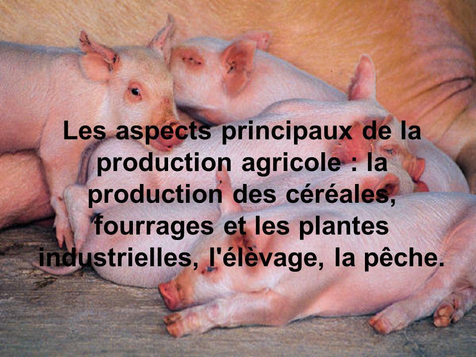 Les aspects principaux de la production agricole : la production des céréales, fourrages et les plantes industrielles, l élèvage, la pêche.