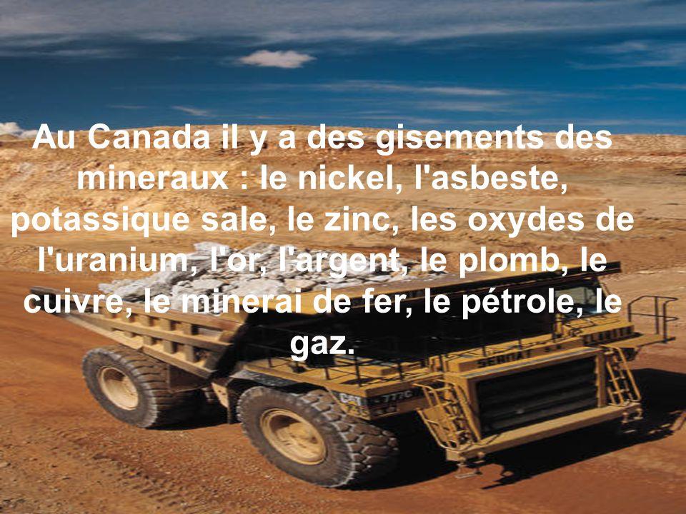 Au Canada il y a des gisements des mineraux : le nickel, l asbeste, potassique sale, le zinc, les oxydes de l uranium, l or, l argent, le plomb, le cuivre, le minerai de fer, le pétrole, le gaz.