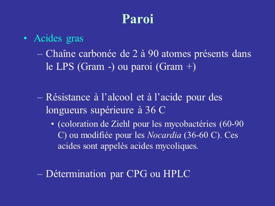 Paroi Acides gras. Chaîne carbonée de 2 à 90 atomes présents dans le LPS (Gram -) ou paroi (Gram +)