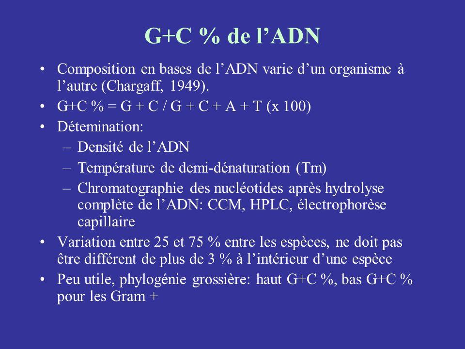G+C % de l'ADN Composition en bases de l'ADN varie d'un organisme à l'autre (Chargaff, 1949). G+C % = G + C / G + C + A + T (x 100)