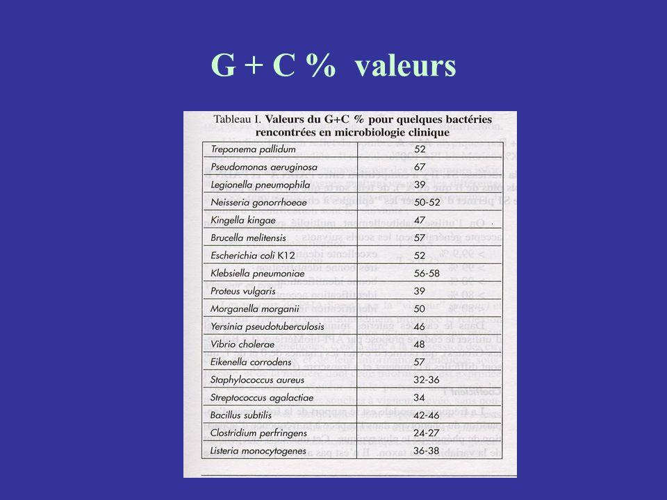 G + C % valeurs