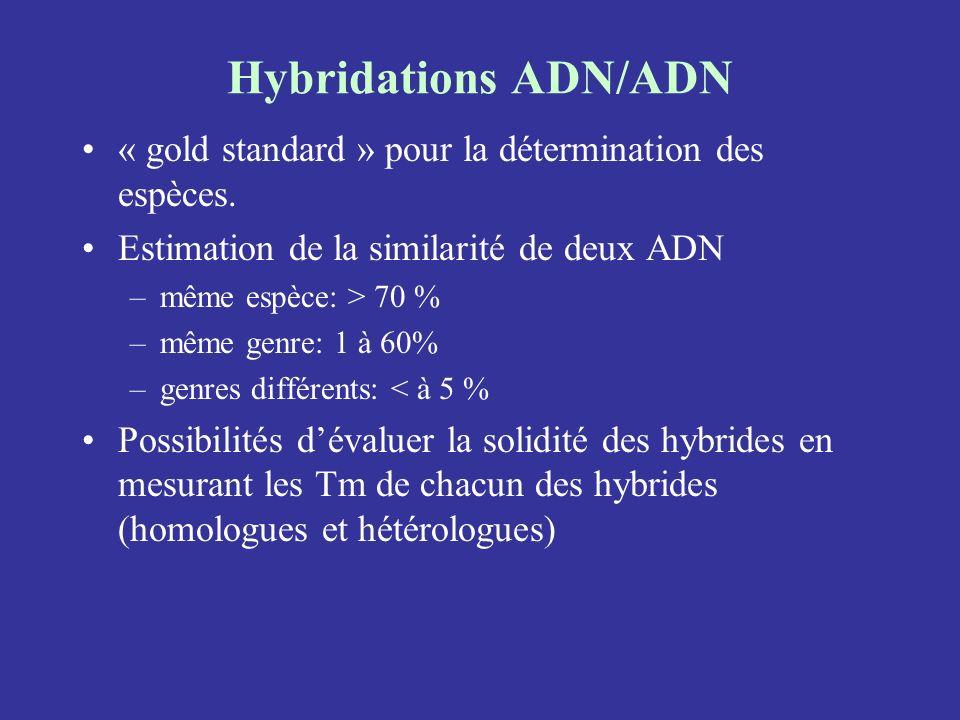 Hybridations ADN/ADN« gold standard » pour la détermination des espèces. Estimation de la similarité de deux ADN.