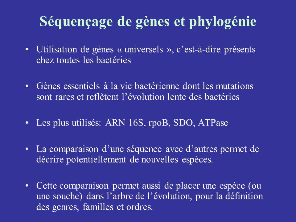 Séquençage de gènes et phylogénie