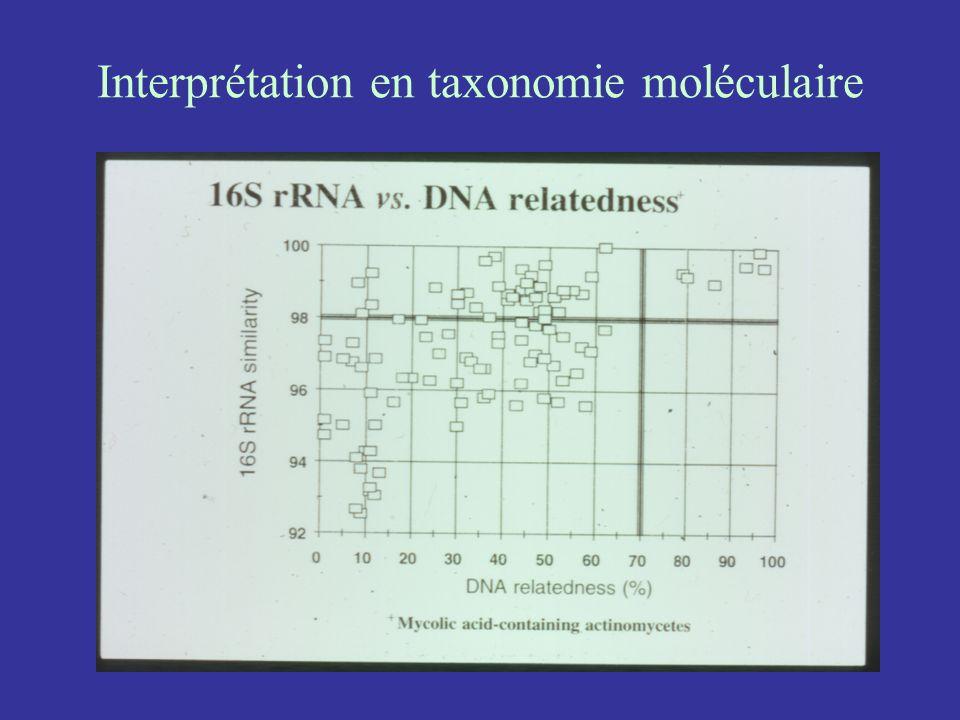 Interprétation en taxonomie moléculaire