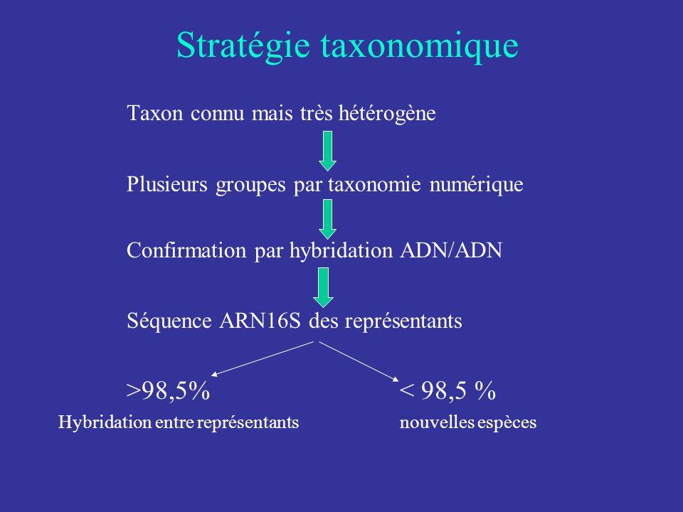Stratégie taxonomique