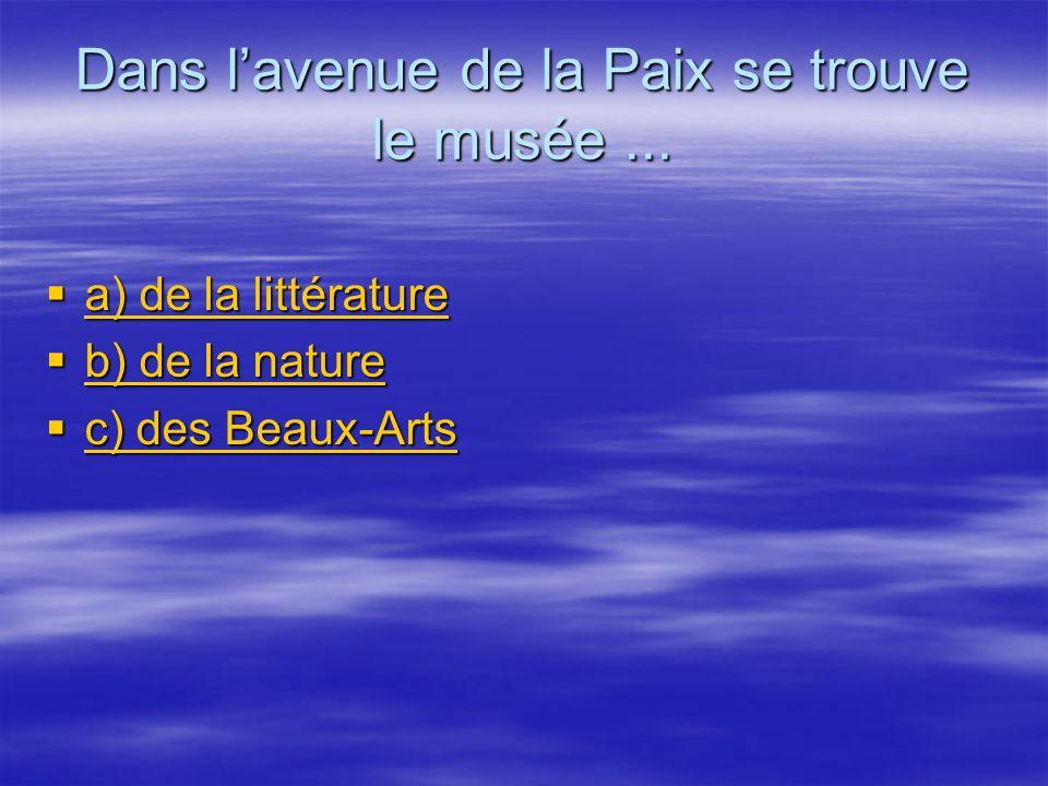 Dans l'avenue de la Paix se trouve le musée ...