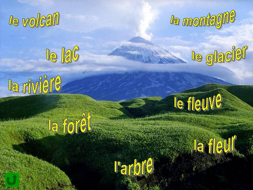 la montagne le volcan le lac le glacier la rivière le fleuve la forêt la fleur l arbre
