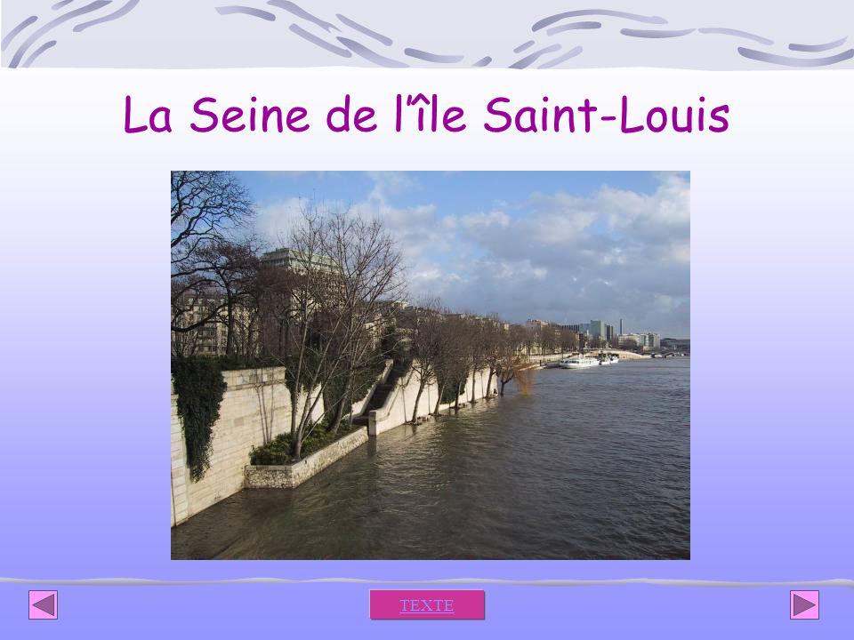 La Seine de l'île Saint-Louis