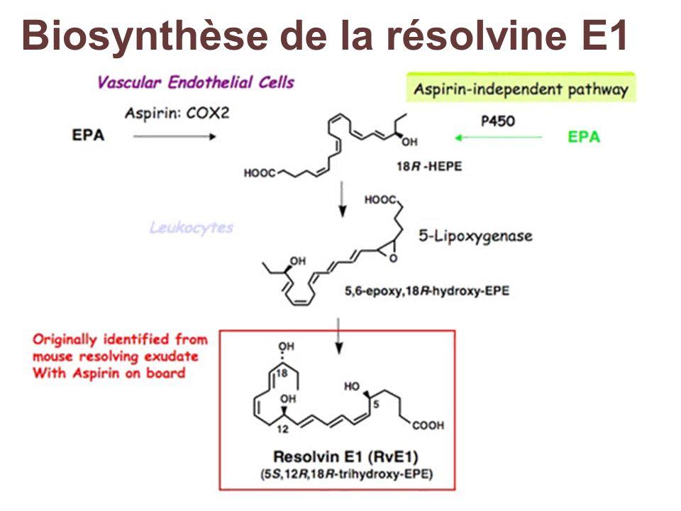 Biosynthèse de la résolvine E1