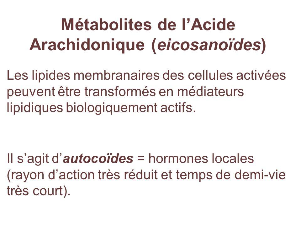 Métabolites de l'Acide Arachidonique (eicosanoïdes)