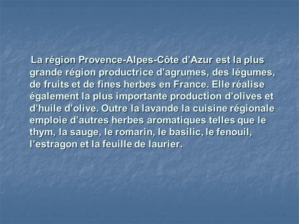 La région Provence-Alpes-Côte d'Azur est la plus grande région productrice d'agrumes, des légumes, de fruits et de fines herbes en France.